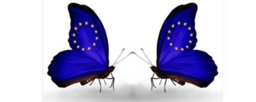 imagen mariposa