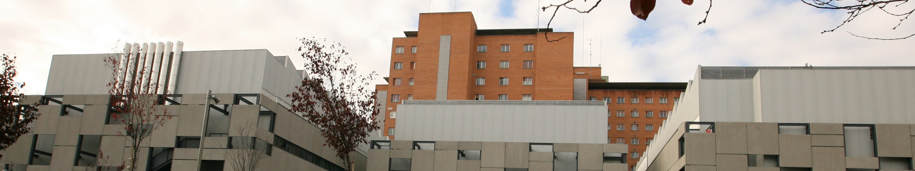Hospital Clínico Universitario de Valladolid 2